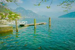 Wooden pier on lake Lucerne in Switzerland. Stock Image