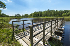 Wooden pier on the lake Royalty Free Stock Image