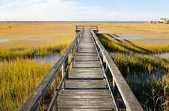 Wooden pier over swamp in North Wildwood Stock Image