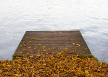 Wooden pier on pond and autumn leaves Royalty Free Stock Image