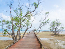 Wooden pier stretching into the sea. In Mark Island, Trad province,Thailand Royalty Free Stock Image