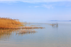 Wooden pier in tranquil lake Balaton Stock Photography