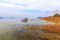 Wooden pier in tranquil lake Balaton Royalty Free Stock Photography