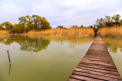 Wooden pier in tranquil lake Balaton Stock Photos