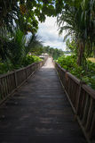 Wooden pier on tropical lake. Stock Photography
