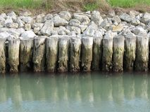 Wooden piles along a canal Royalty Free Stock Image