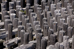 Wooden Pilings Royalty Free Stock Images