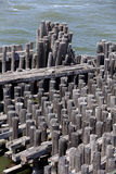 Wooden Pilings Royalty Free Stock Image