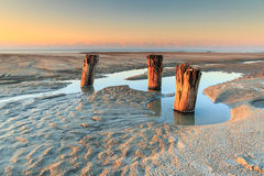 Wooden Pilings at Low Tide Folly Beach Washout. Early morning light shines on wooden pilings uncovered at low tide on Folly Beach in the Washout Area near Stock Photos