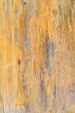 Wooden pillar Stock Photo