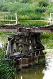 Wooden pillar supporting a broken bridge above a shallow water and vegetation. stock photo