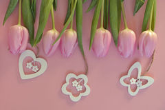 Wooden pink empty copy space background with pink tulips. Wooden pink empty copy space background with fresh colorful spring tulips. A row of orange, red,pink Royalty Free Stock Photo
