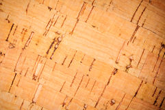 Wooden pith a texture Royalty Free Stock Photos