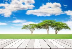 Wooden plank on big trees stock photo