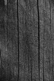 Wooden Plank Board Grey Black Wood Tar Paint Texture Detail, Large Old Aged Dark Gray Detailed Cracked Timber Rustic Macro Closeup Royalty Free Stock Images