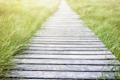 Wooden plank board walkway Royalty Free Stock Photos