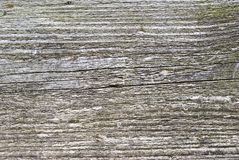 Wooden plank texture. Very old wooden plank texture stock image