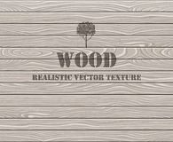 Wooden plank texture background Royalty Free Stock Image