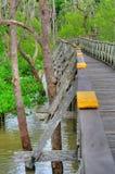 Wooden plank walking bridge. In rain forest Stock Photo
