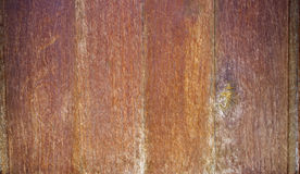 Wooden plank on wall as texture Stock Image