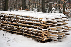 Wooden planks. Snowy wooden planks in the forest Stock Images