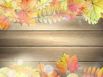 Wooden planks with autumn leaves. EPS 10 Stock Photography