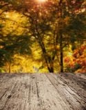 Wooden planks with autumn trees Royalty Free Stock Photo