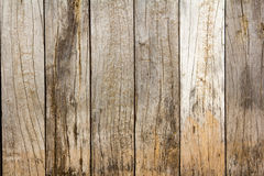 Wooden planks background texture. Stock Image