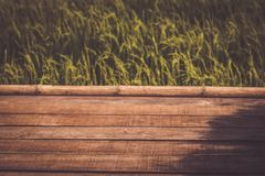 Wooden planks floor with summer mountain landscape rice field green environment holiday background.  royalty free stock photo