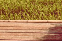 Wooden planks floor with summer mountain landscape rice field green environment holiday background vintage tone.  royalty free stock photo