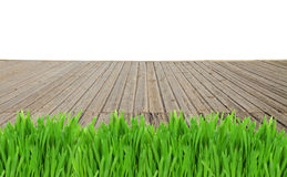 Wooden planks and grass Stock Images
