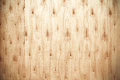 Wooden planks nature texture, wood background Royalty Free Stock Photos