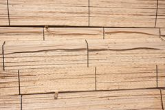 Wooden planks waiting for transport to the factory Stock Image
