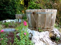Wooden Planter Royalty Free Stock Photo