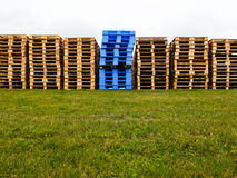 Wooden and plastic pallets. A row of empty wooden and blue plastic pallets Stock Photography