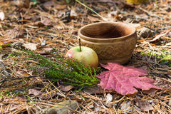 A wooden plate with heather, apple and red leaves Royalty Free Stock Photo
