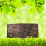 Wooden plate over green grass Royalty Free Stock Photography