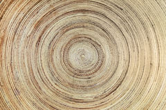 Wooden plate texture background. Close up Stock Photography