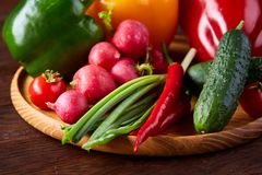 Wooden plate with vegetables for a vegetarian salad on rustic wooden background, close-up, selective focus. Cucumber, raddish, bell pepper and hot pepper ready royalty free stock images