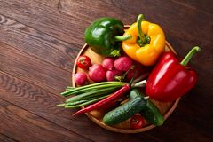 Wooden plate with vegetables for a vegetarian salad on rustic wooden background, close-up, selective focus. Cucumber, raddish, bell pepper and hot pepper ready royalty free stock photo
