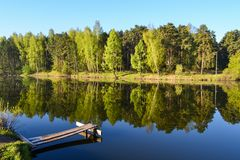 Wooden platform and calm water of the lake. The spring forest and the blue sky are reflected in the water. Stock Photos