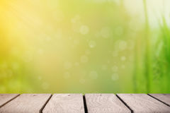 Wooden platform at garden for background Royalty Free Stock Photos