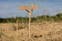 Wooden pointer in Forest and Grass Royalty Free Stock Photo