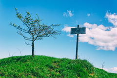 Wooden pointer on a green hill next to the tree on the background of blue sky Royalty Free Stock Photography