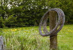 Wooden pole with barbwire Stock Photos