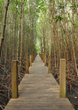 Wooden pole path walk Stock Photo