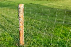 Wooden pole and wire fence, with green meadow in background. Far royalty free stock photos