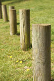 Wooden poles Stock Photography