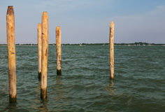 Wooden Poles. Six wooden poles in a Venetian canal Royalty Free Stock Images