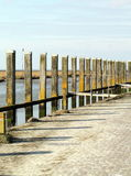 Wooden poles Royalty Free Stock Images